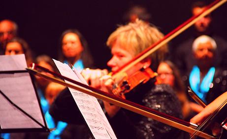 concerto Profilar